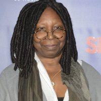 Whoopi Goldberg es la voz de un miembro del equipp de Lotso. Foto:Getty Images