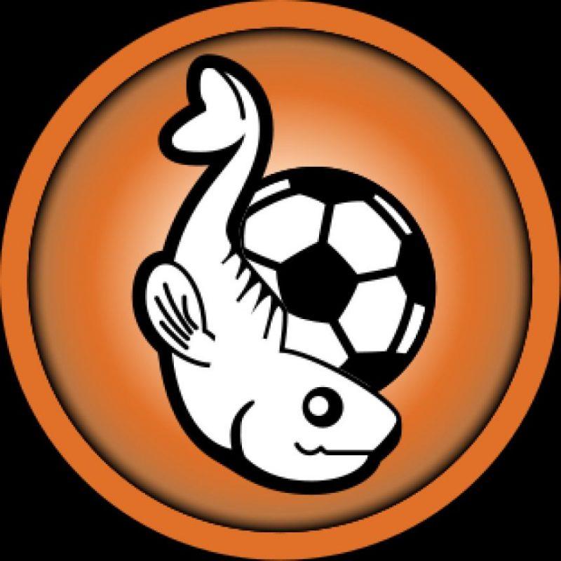 Football Club Lorient (Francia) Foto:Twitter