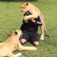 """Eduardo recibe """"besos"""" de sus animales y admite que son dolorosos Foto:BlackJaguarWhiteTiger vía Instagram"""