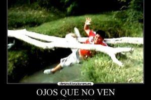 """Edgar, de """"Edgar se cae"""" se volvió famoso en México cuando alguien lo tiró de un """"puente"""" Foto:Cheezburger"""
