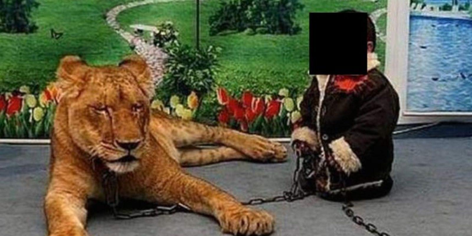 """Al lado del """"gatito"""" Foto:Twitter"""