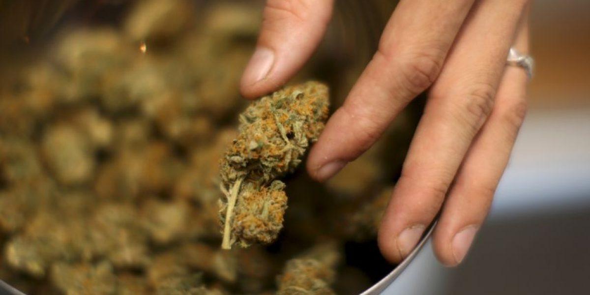 Marihuana medicinal también entra a debatirse en Estados Unidos