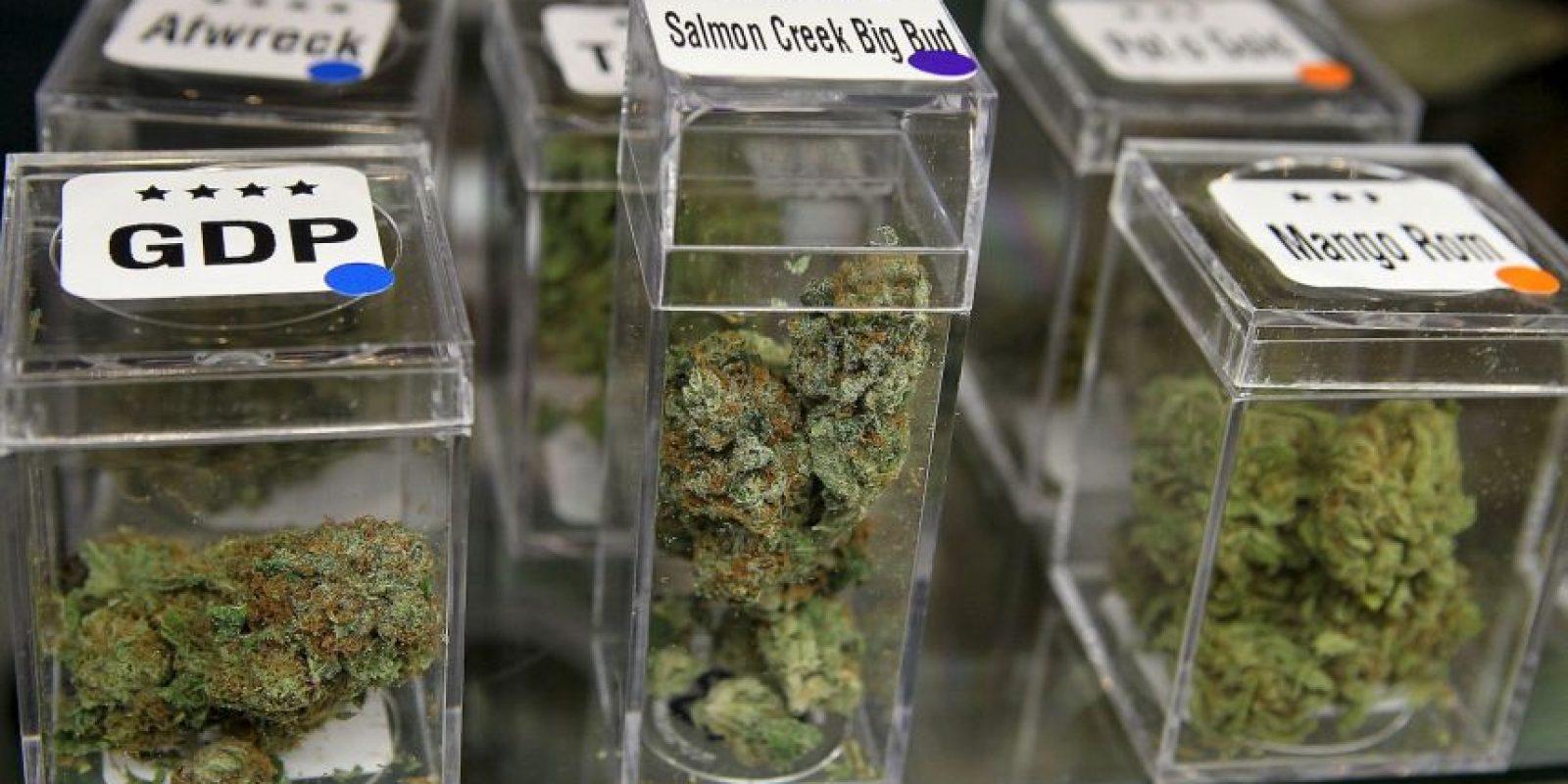 El estudio científico de los compuestos químicos, llamados cannabinoides, han servido para el desarrollo de dos medicamentos ya aprobados Foto:Getty Images