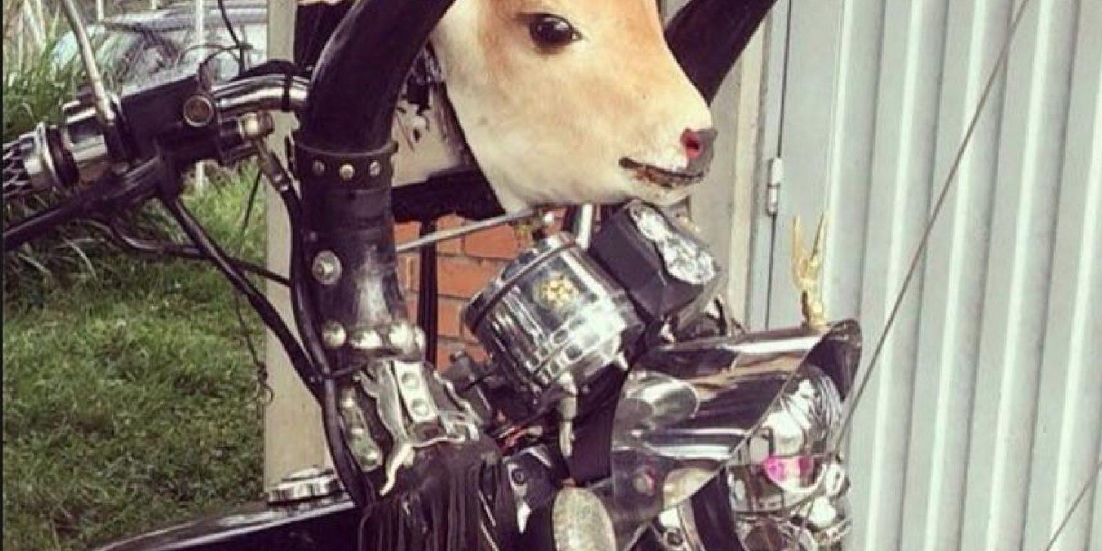 Esta moto Foto:Colombianadas