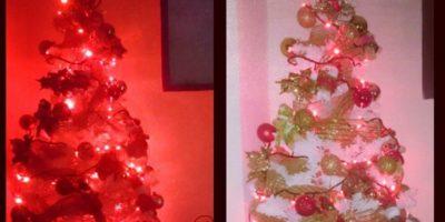 Elianis Garrido se animó y prendió el árbol de Navidad. Foto:Instagram