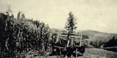 Esta foto fue tomada en 1920.