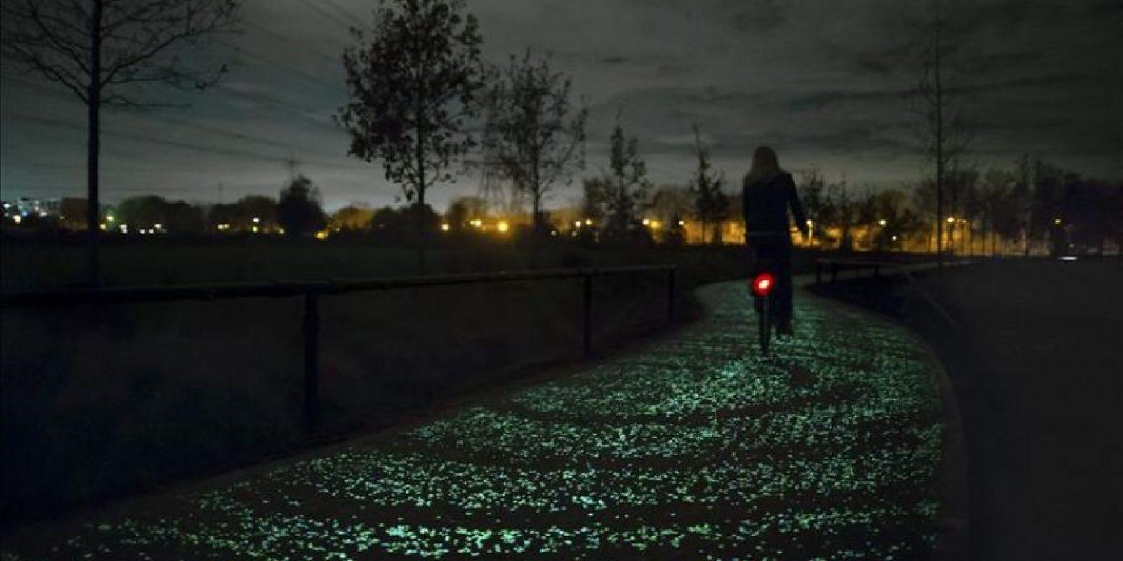 """Fotografía facilitada por el Estudio de diseño Roosegaarde, del carril bici """"Van Gogh"""" cerca de Eindhoven, diseñado por el holandés Daan Roosegaarde. EFE"""