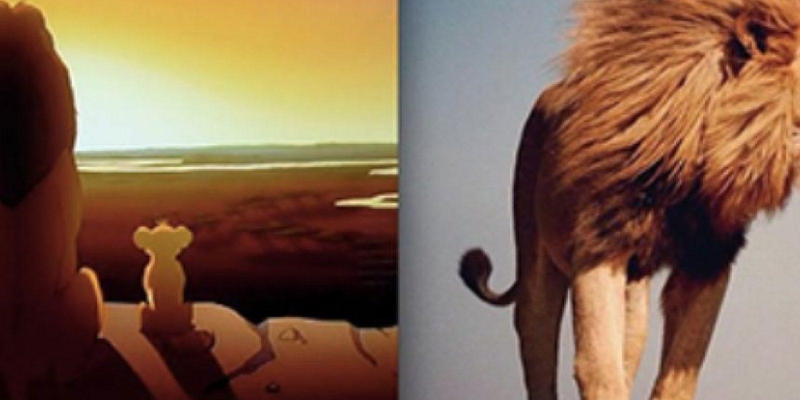 Mufasa y Simba.
