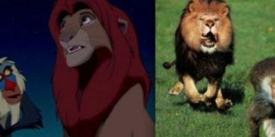 Simba y Rafiki.