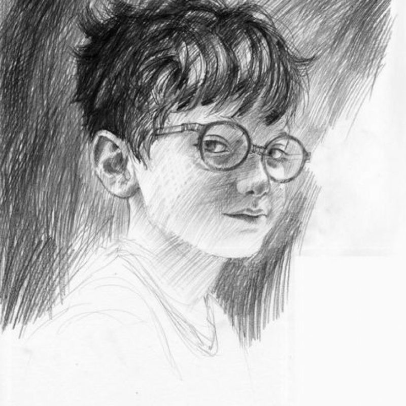 Harry Potter (libro ilustrado) Foto: Jim Kay