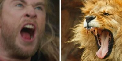 Chris Hemsworth y el Rey León… Foto: Twitter
