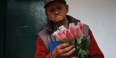 Las arregla con cuidado. Foto:Juan Pablo Pino / Publimetro