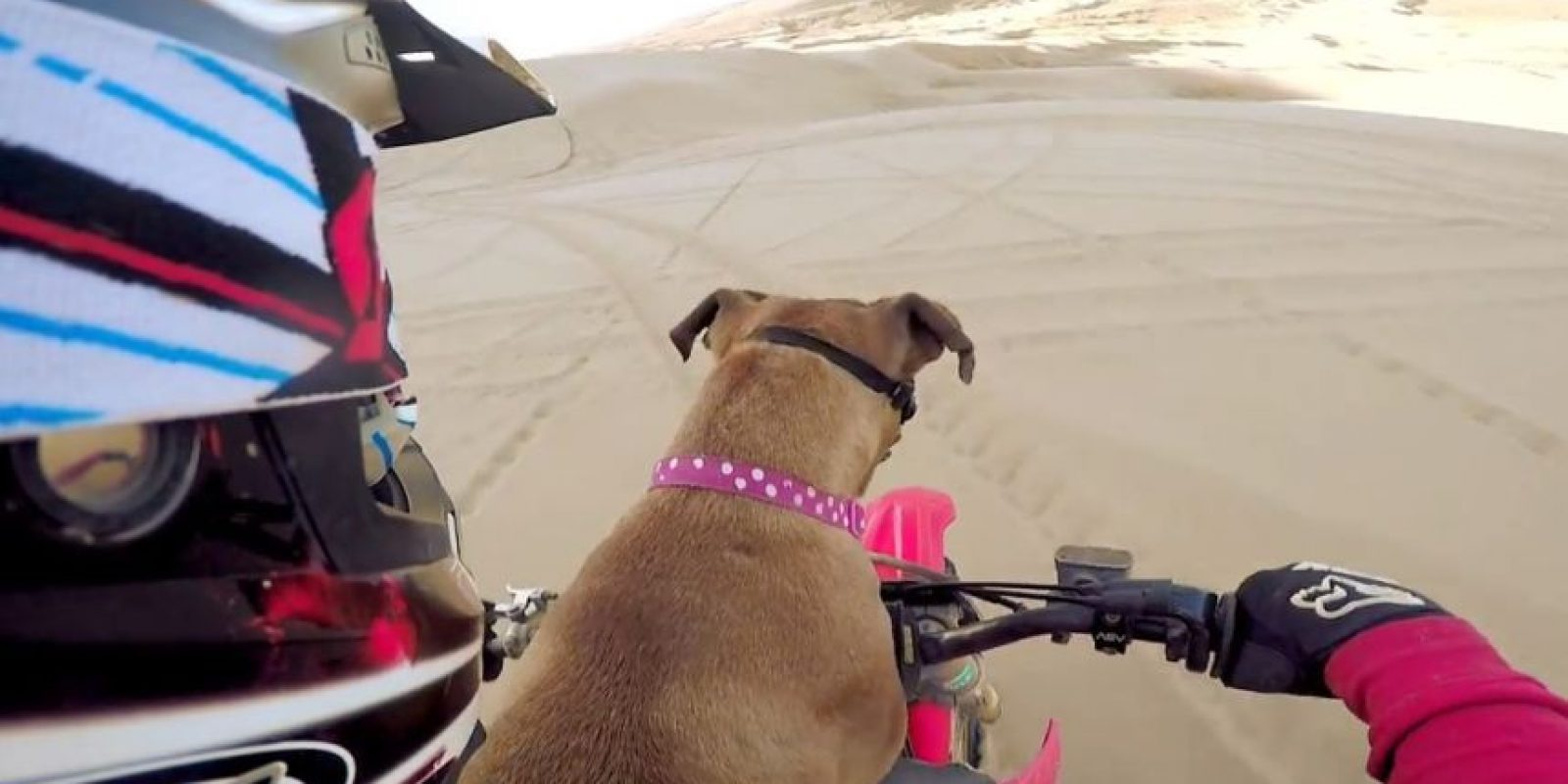 Motociclismo Foto:GoPro