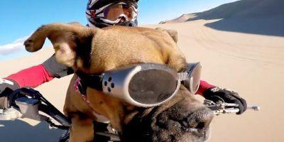 James Stott y su perro dieron un paseo por Little Sahara, Utah, en los Estados Unidos. Foto:GoPro