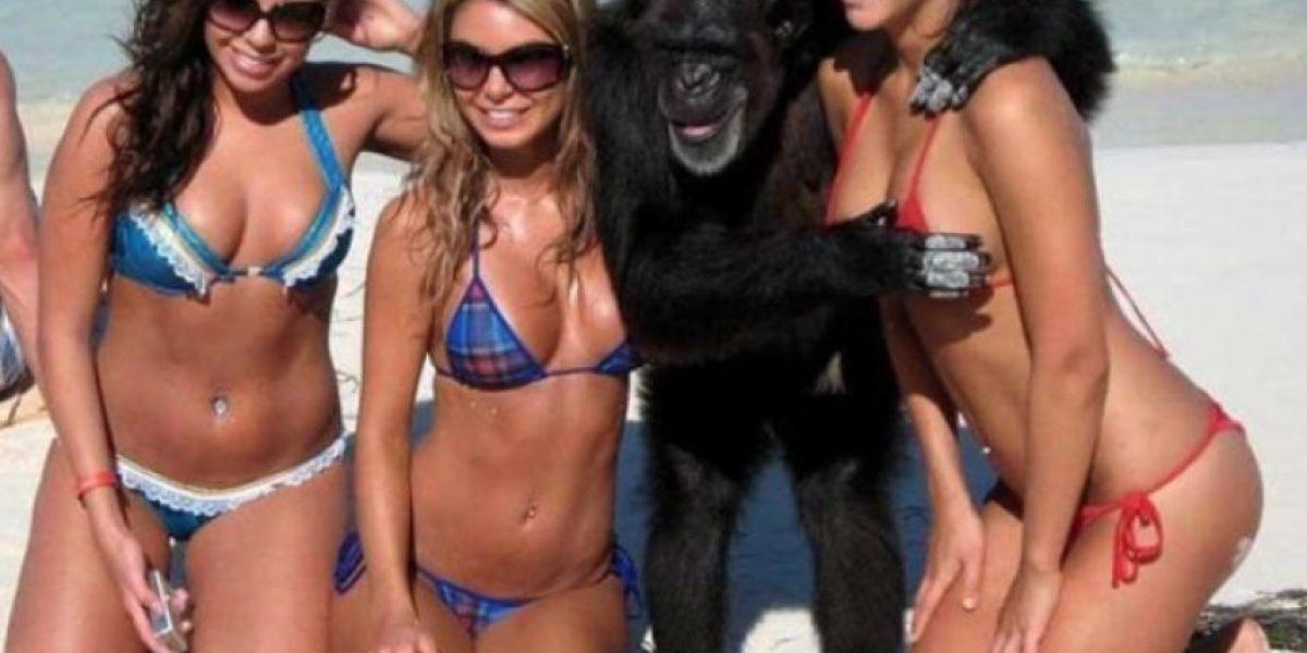 Fotos: Fails de lindas chicas en bikini