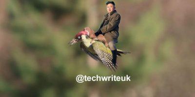 Kim Jong-un Foto:Twitter