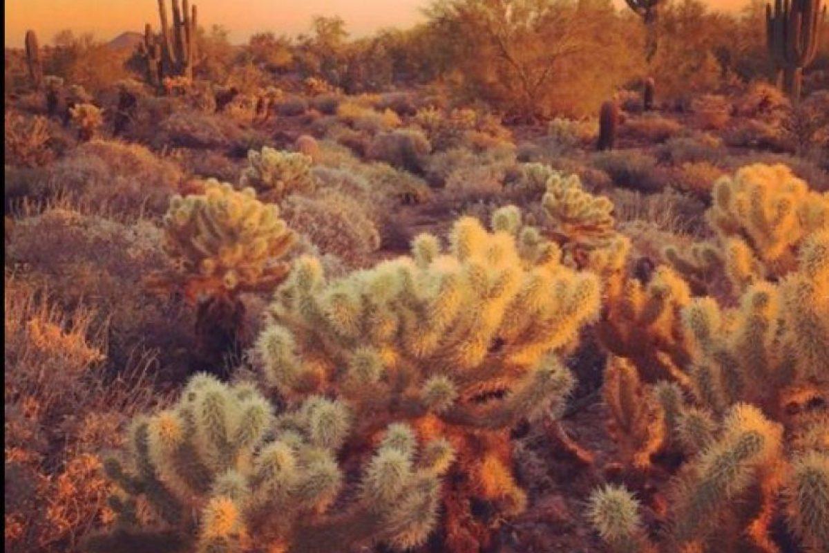 Tomada por Andrew P. en Phoenix, Arizona. (Apple)