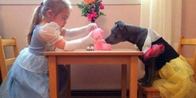 El temperamento del perro depende de su dueño. Foto:Flickr