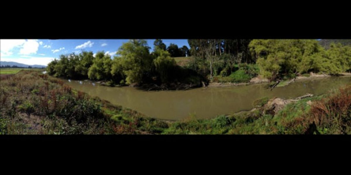 """""""El río Bogotá no está muerto"""""""