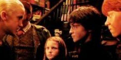 Él y su padre destilaban un odio clasista por los amigos de Harry, la familia Weasley Foto:Warner