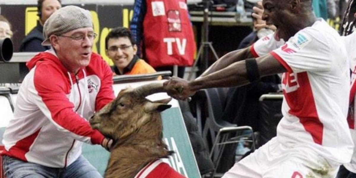 VIDEO: ¡Terrible! Maltrato animal en celebración de gol