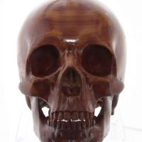 También se ha utilizado para crear prótesis de cuerpo humano Foto:Getty Images
