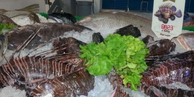 Y hace de la preparación de este pez algo mucho más accesible. Foto:Jorge Rausch/Facebook