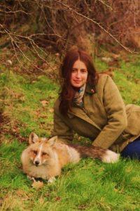 """Él es Todd. Su dueña es Amanda. Desde que fue adoptado por ella, cuando era un cachorro, nunca supo que era un zorro. Prácticamente actúa como """"un perro"""". Su dueña cree que es porque nunca estuvo en la vida silvestre. De hecho, tuvo dueños humanos antes. Pasea con correa y está en su perrera. Foto:Facebook/Amanda D' Sylva"""