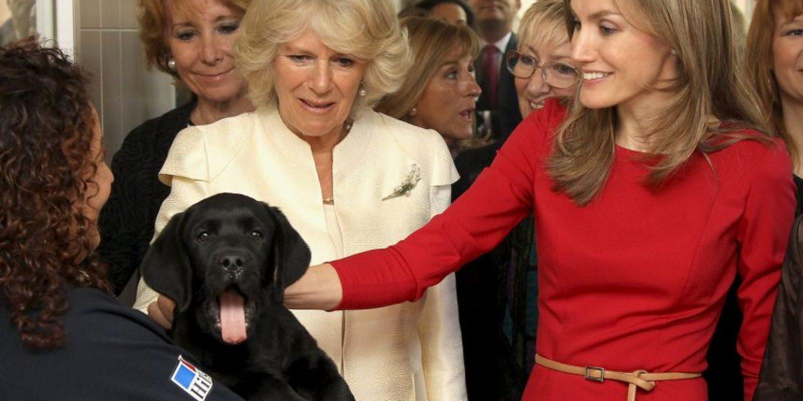 La Reina Letizia y Camila Parker sonríen con este cachorro Foto:Getty Images