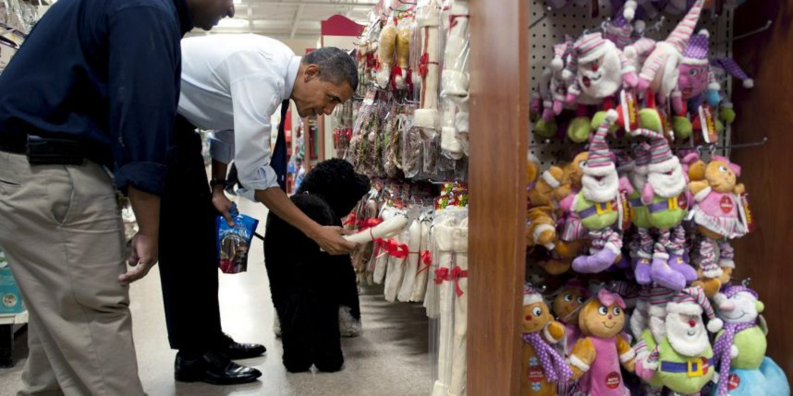 Obama consiente a su perro Foto: Getty Images