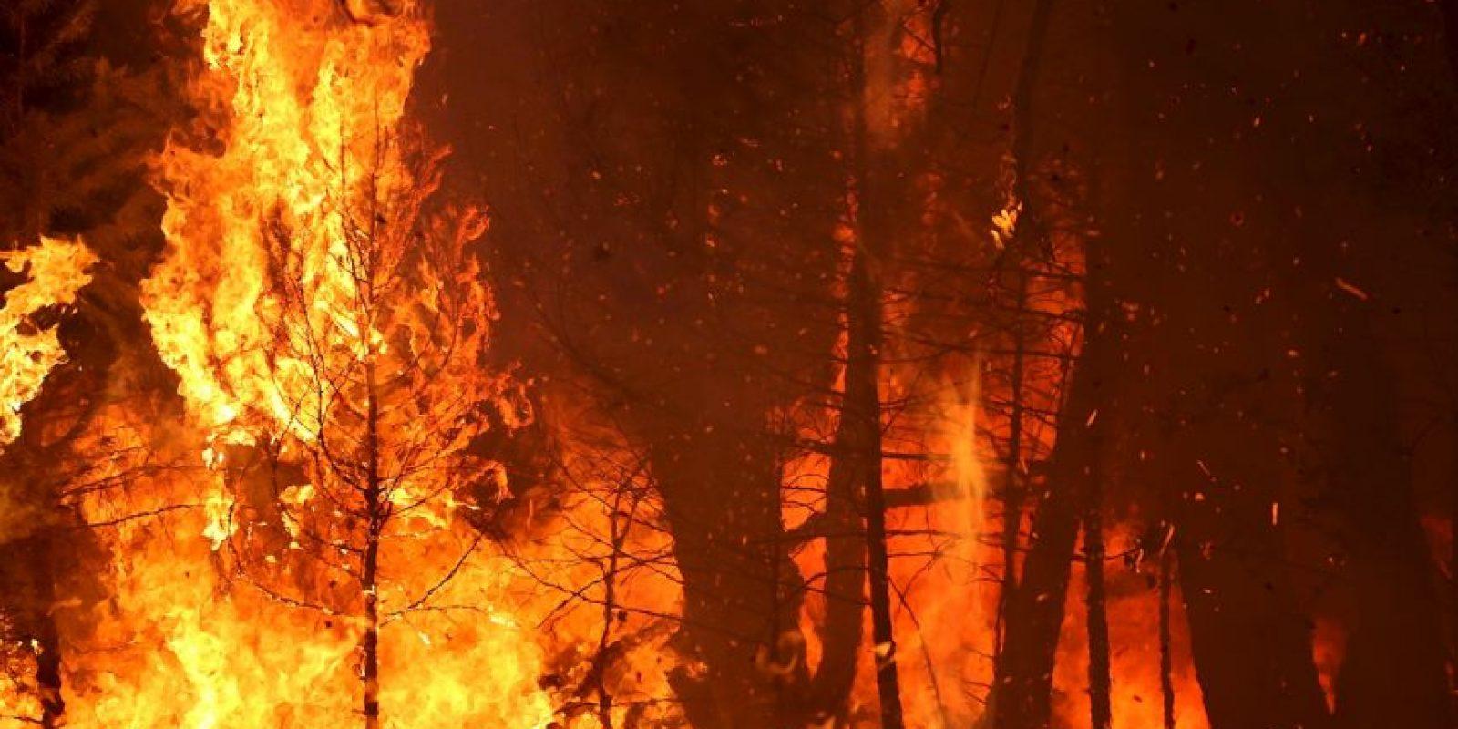 Mantenerse cerca del área de peligro. El fuego puede avivarse y tornarse más peligroso Foto:Getty Images