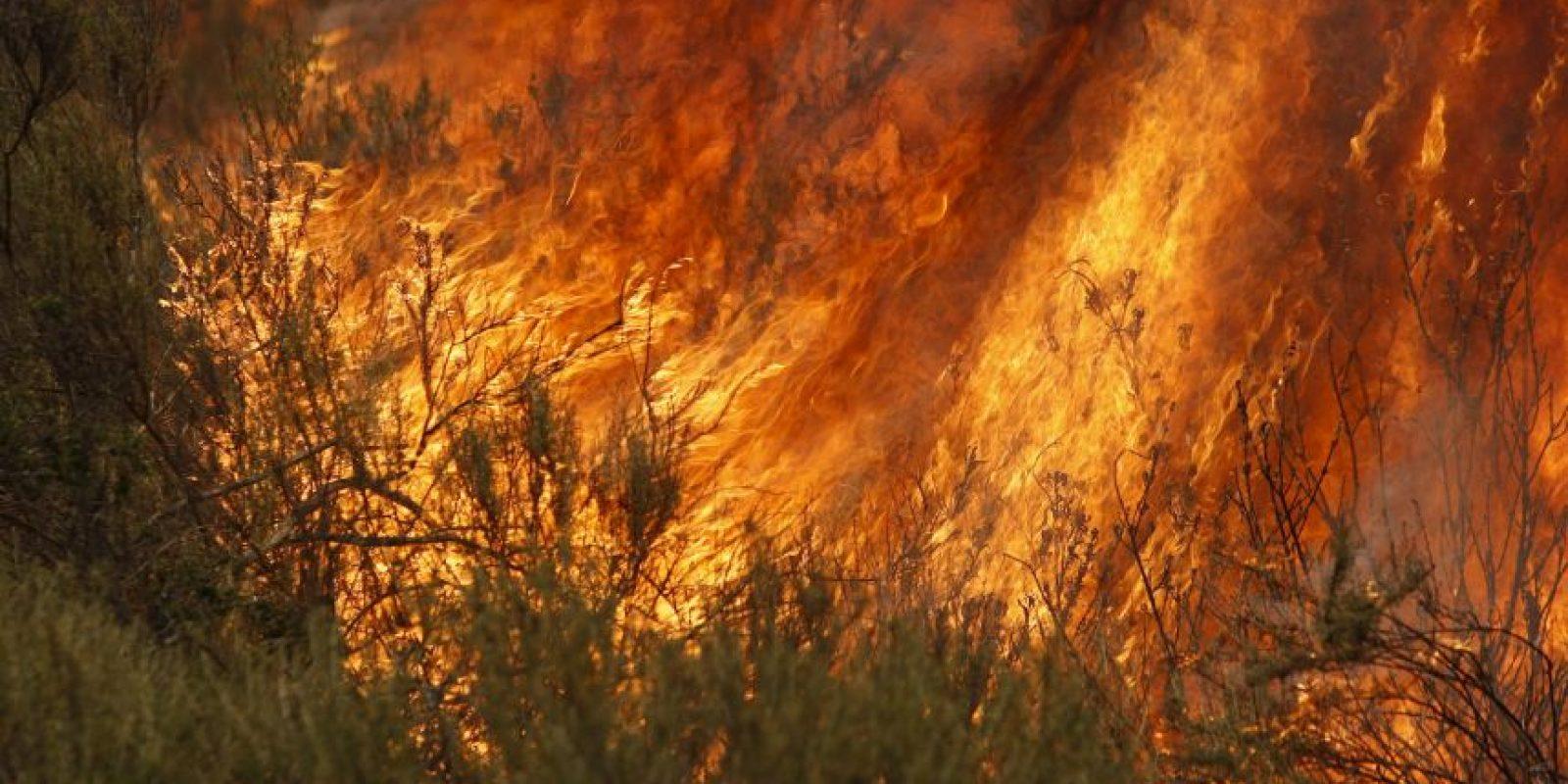 Continuar con sus actividades ante la señal de alerta. Autoridades recomiendan evacuar de inmediato Foto:Getty Images