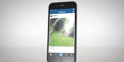 Así aparecen publicadas las fotos en Instagram. Foto:facebook.com/whiskasAU