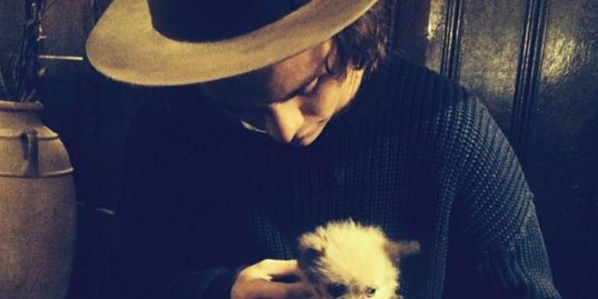 FOTOS: 8 cosas que prueban que Harry Styles es más