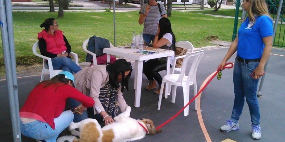 Realizan jornadas sobre tenencia adecuada de mascotas en Suba