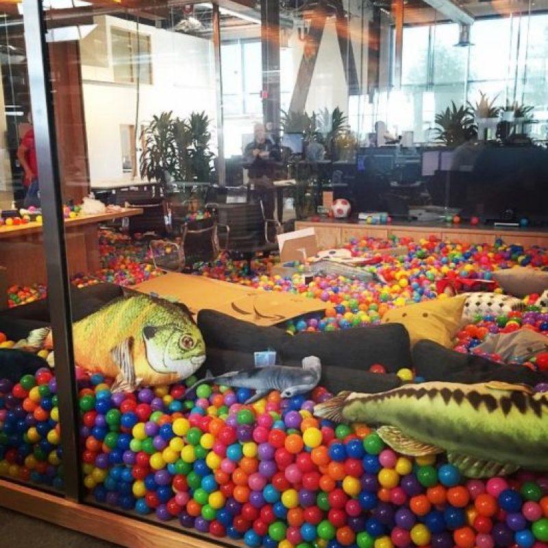 La sala de juntas con pelotas de plástico y peces de esponja. Foto:instagram.com/bobspace