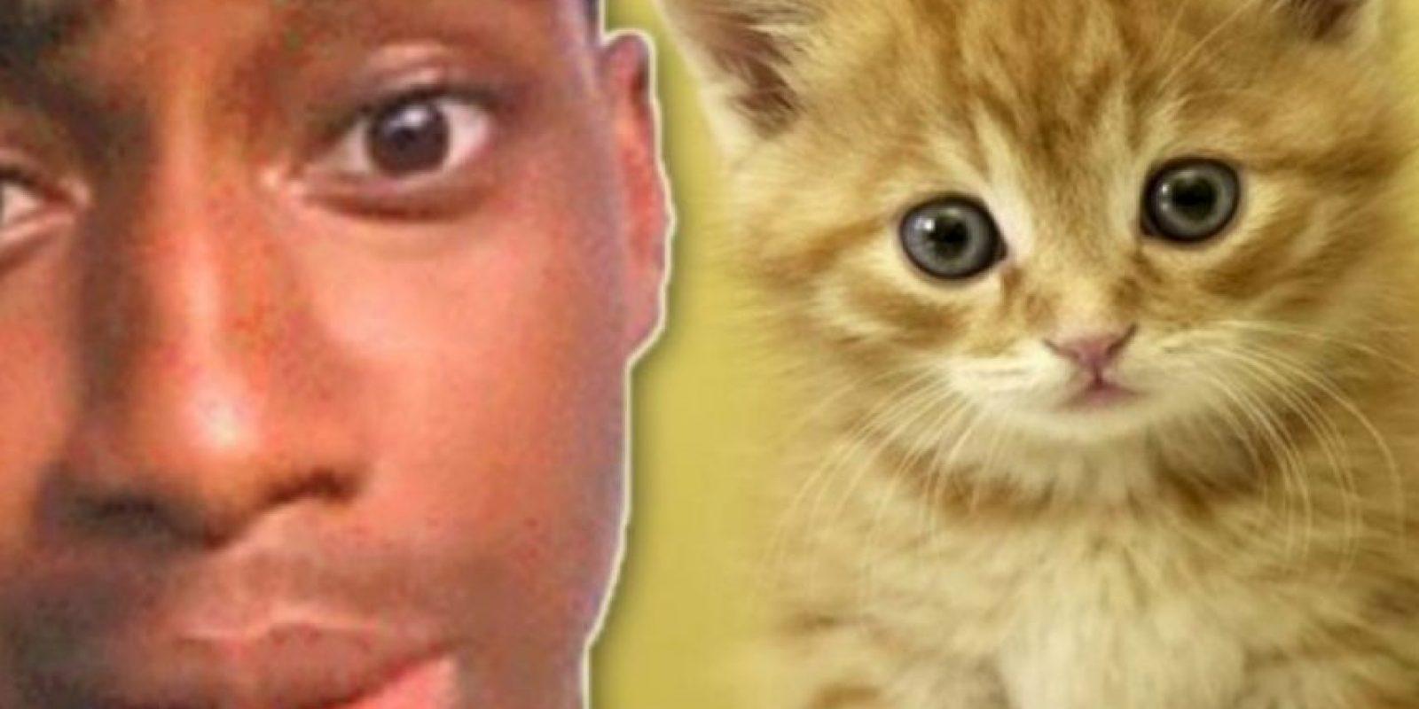 """Pateó a su pequeño gatito: Walter Easley se ganó el odio de Internet cuando tuvo la """"brillante idea"""" de grabarse a sí mismo pateando a su gatito. Inicialmente se burló de los comentarios de odio en Twitter diciendo: """"lol, ahora tengo algo con lo qué reírme todo el día"""". Pero el video se volvió viral y a él lo arrestaron. Tuvo que pasar 60 días en prisión. El gatito no sufrió ningún daño, pero a su dueño le quitaron la custodia. Foto:Oddee"""