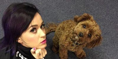 Katy Perry Foto:Vía instagram.com/katyperry/