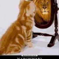 Un dato interesante fue que las mujeres percibían a los narcisistas como los hombres más atractivos. Foto:Tumblr.com/tagged-narcisista