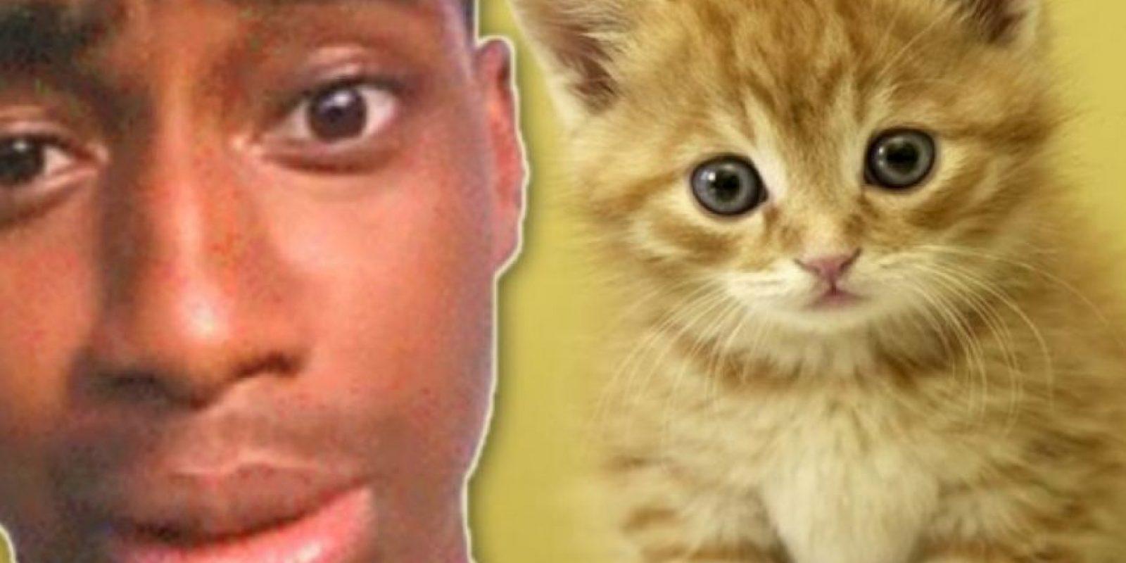 """2. Pateó a su pequeño gatito: Walter Easley se ganó el odio de Internet cuando tuvo la """"brillante idea"""" de grabarse a sí mismo pateando a su gatito. Inicialmente se burló de los comentarios de odio en Twitter diciendo: """"lol, ahora tengo algo con lo qué reírme todo el día"""". Pero el video se volvió viral y a él lo arrestaron. Tuvo que pasar 60 días en prisión. El gatito no sufrió ningún daño, pero a su dueño le quitaron la custodia. Foto:vía Oddee"""
