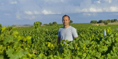 También incluye una visita guiada por los viñedos, las instalaciones de Bodega Iniesta. Foto:Vía bodegainiesta.es
