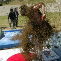El cuerpo de estos insectos es velludo, teniendo un pelo plumoso sobre el que se pega el polen de las flores sobre las que se posa, al mismo tiempo tiene sobre su pequeña cabeza dos antenitas que le sirven al olfato, para así poder localizar sus flores. Foto:Getty Images