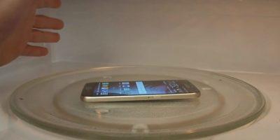 En un horno de microondas. Foto:TechRax
