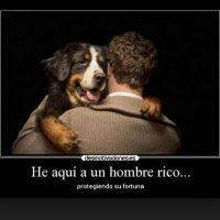 Foto:Tumblr.com/tagged-amor-perros