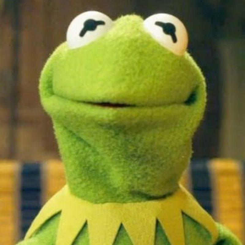 Su parecido con la rana René es asombroso