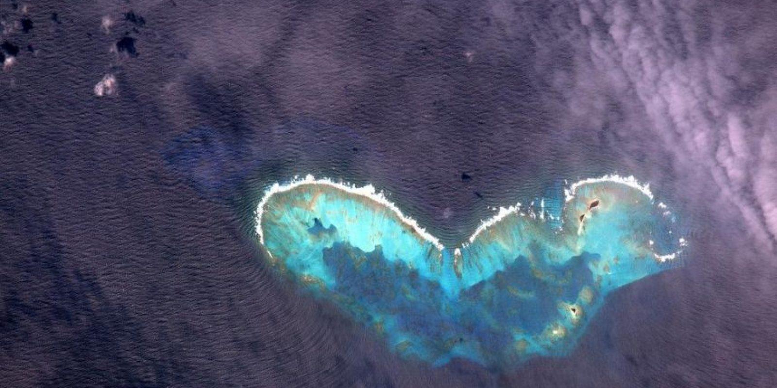 """Esta mariposa fue captada en el Golfo de México"". Foto:Facebook.com/pages/NASA-Astronaut-Scott-Kelly"