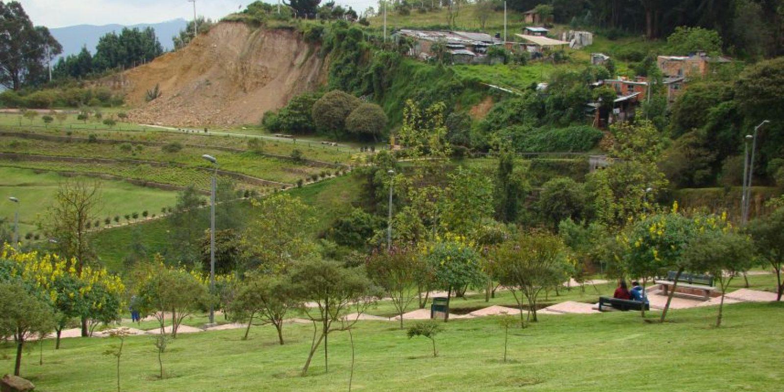 Foto:Cortesía Secretría Distrital de Ambiente