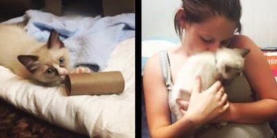 Kiarna fua abandonada por sus padres y vivía en la calle, ahora tiene un pequeño gato. Foto:facebook.com/tommy.connolly.39