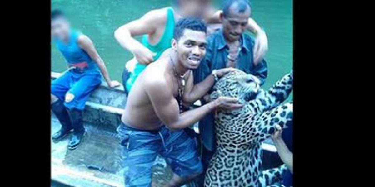 Indignación por jaguar mostrado como trofeo en redes sociales