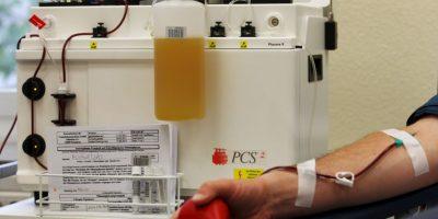 Bolsas de sangre de un centro de transfusión Foto:Getty Images